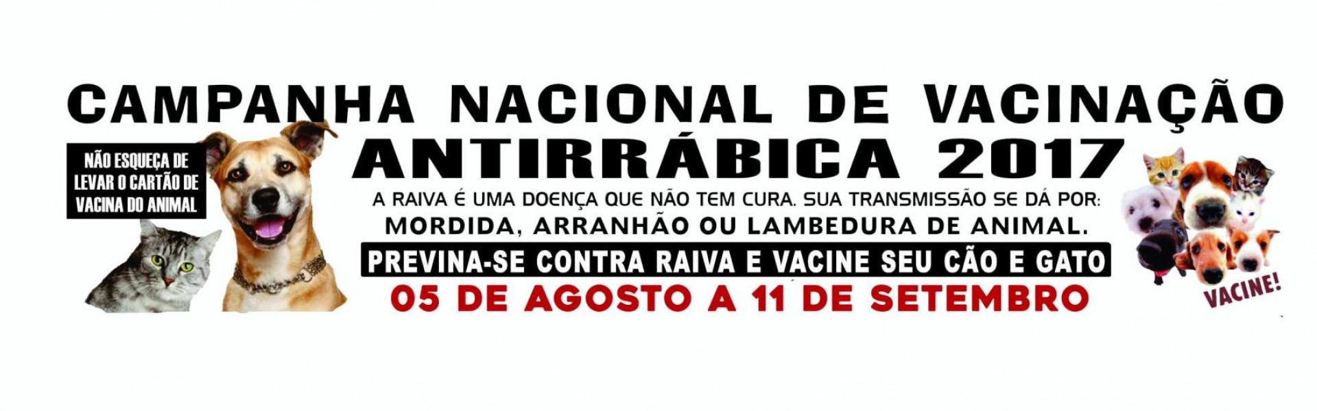 Campanha de vacinação antirrábica começa no dia 05 de agosto