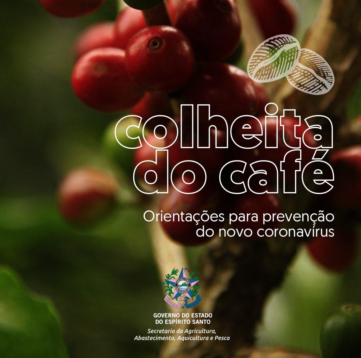 Coronavírus (COVID-19): SEAG cria cartilha para prevenção da doença na colheita do café