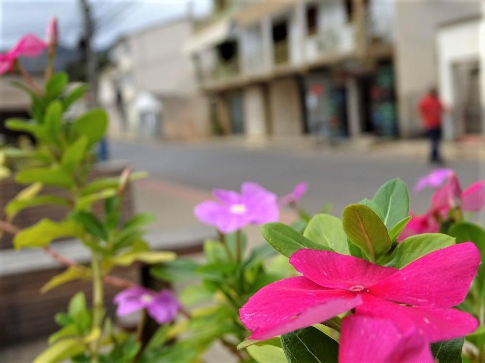 Coronavírus (COVID-19): Classificado em risco baixo, município de Itarana autoriza o funcionamento do comércio sem restrição de dia e horário