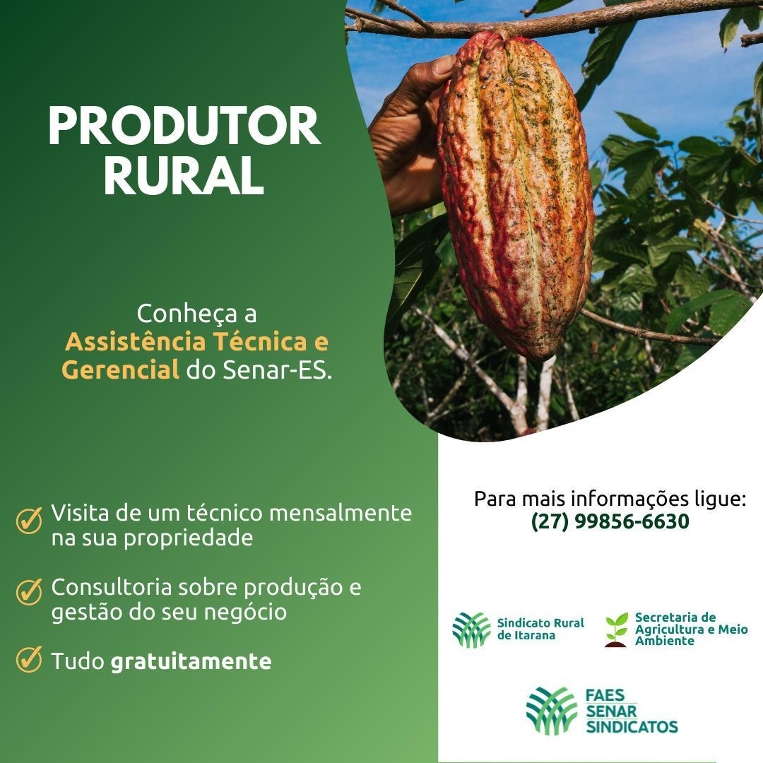 Assistência Técnica e Gerencial do Senar é oferecida para produtores rurais cultivadores de cacau
