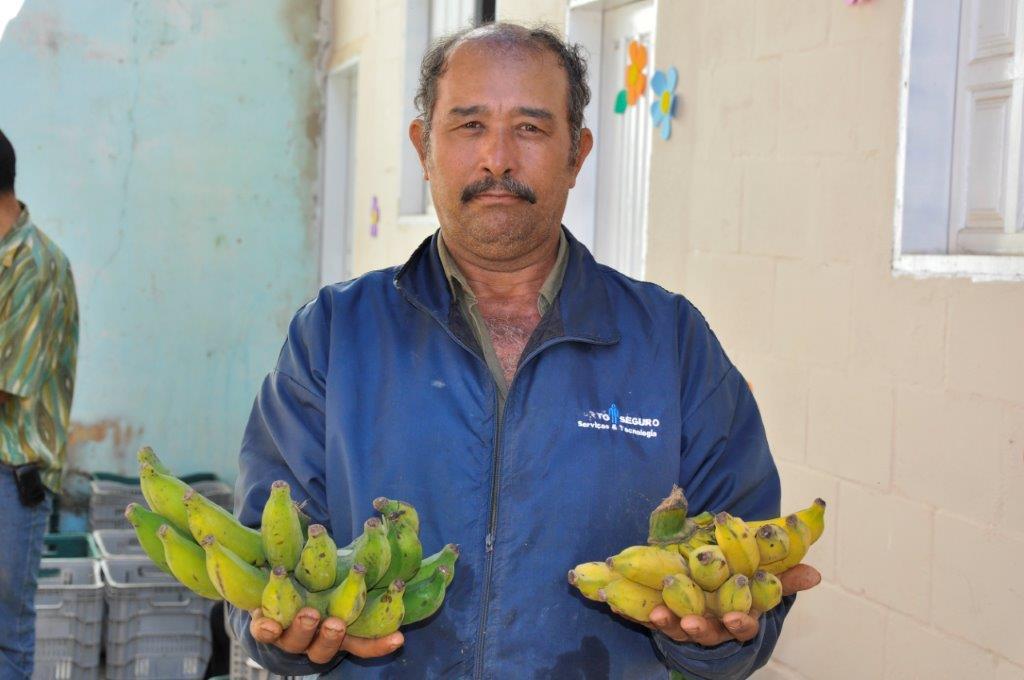 Merenda escolar beneficia agricultura familiar do município